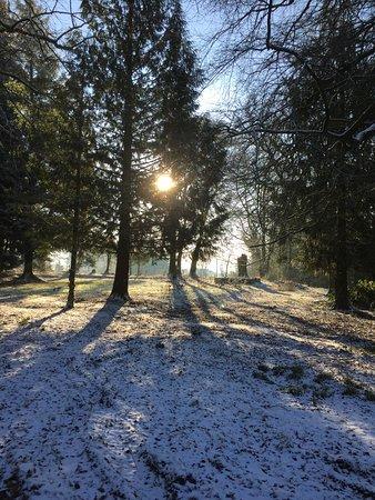 Crossmichael, UK: Sunlight through the memorial garden