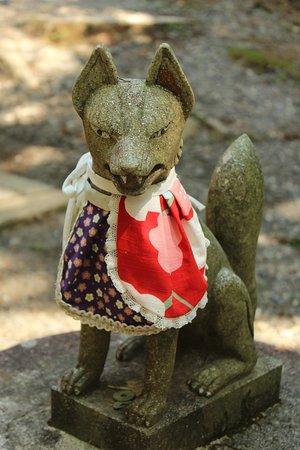 Inari (renard)