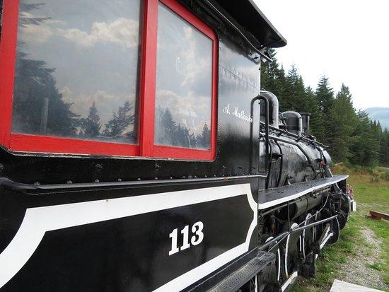 Woss Train 113