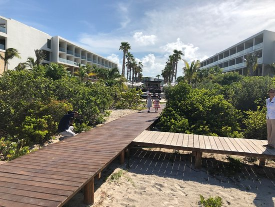 Boardwalk to the patio on the beach for the wedding