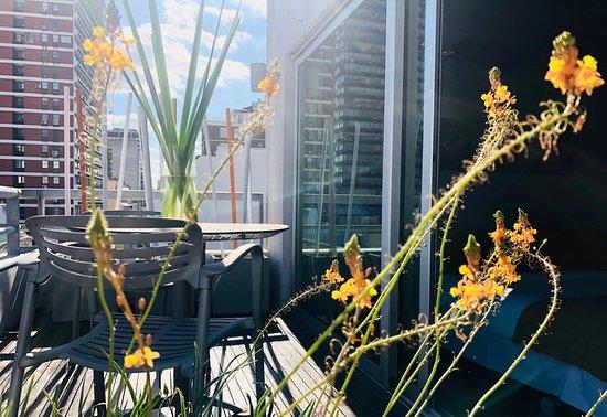 habitacion Ejecutiva Superior - 布宜諾斯艾利斯布宜諾斯艾利斯遠景太陽飯店的圖片 - Tripadvisor