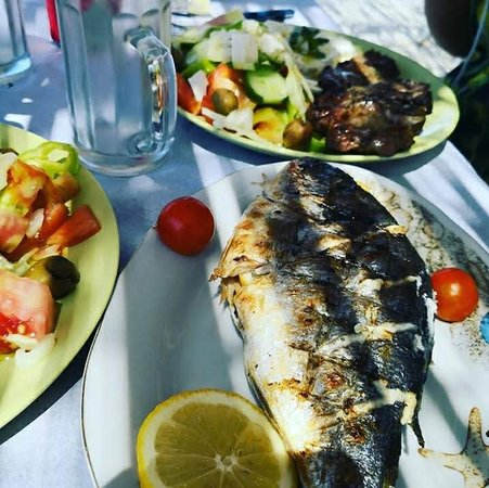 Grilled Fish and salads
