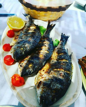 Fresh fish from our sea