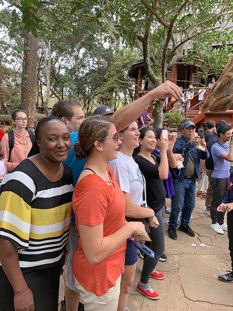 写真4-Day Masai Mara Safari from Nairobi枚