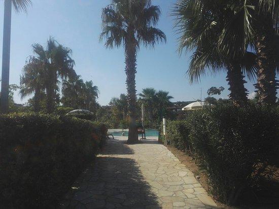 Alcuni Ambienti che Compongono il Complesso dell'Acacia Resort Parco dei Leoni.