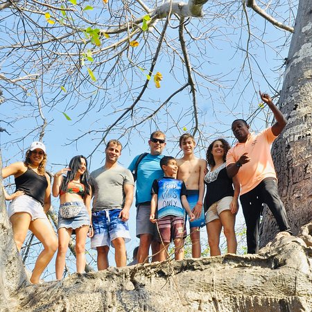 ZANZIBARLEISURE TOURS & SAFARIS: Safari blue