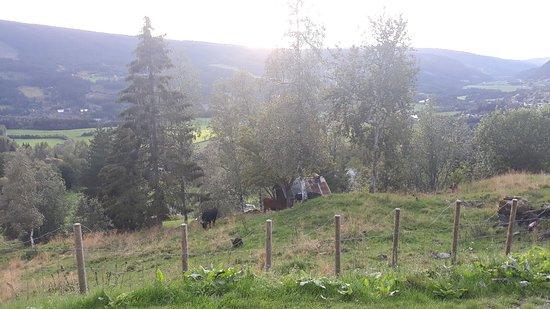 Bilde fra Gausdal