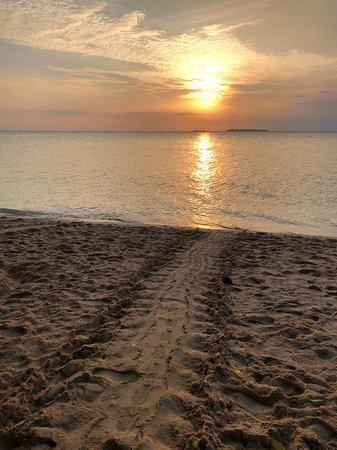 sunrise at Turtle island, seeing the Turtle tracks from last night