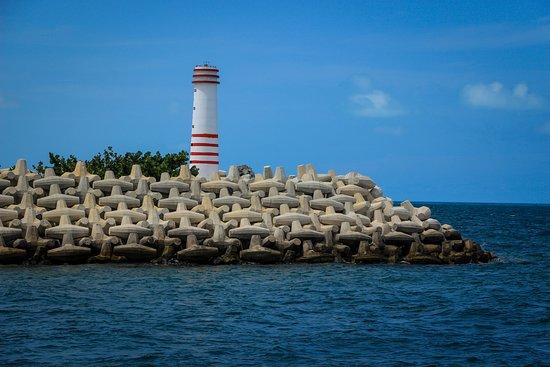 Mayan Jungle Adventure Tour: Catamaran