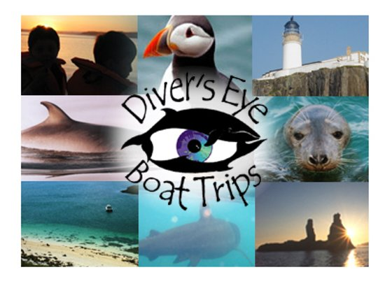 Watch for our timetable listing linked to this image on our facebook page https://www.facebook.com/DiversEyeBoatTrips