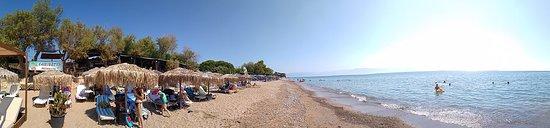 Chrani, Yunani: CARIBBEAN BEACH BAR (ΧΡΑΝΟΙ ΜΕΣΣΗΝΙΑΣ)