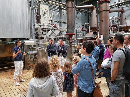 Distillerie Warenghem: La visite de la salle des alambics !