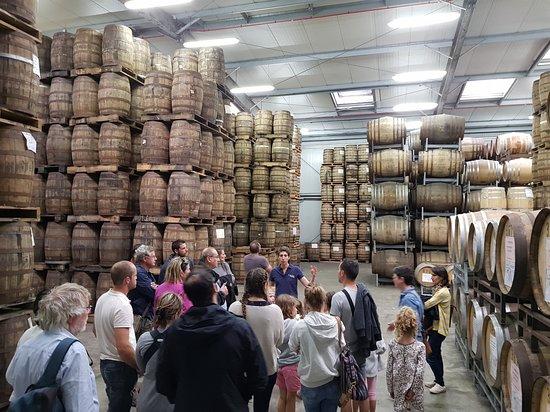 Distillerie Warenghem: Suite de la visite le chais !
