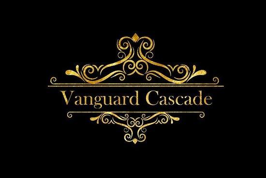 Vanguard Cascade Transfers