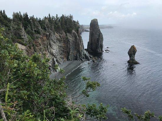 Stunning views along the coastal trail.