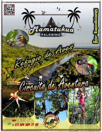 Mamatukua, Treetop Adventure. Riverside beach, indigenous sacred place and much more!