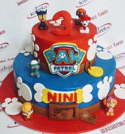 pawpatrol cake from Irresistible Cakes
