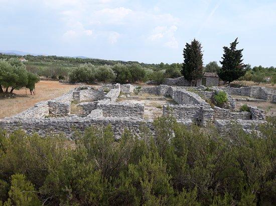 Prizba Remains