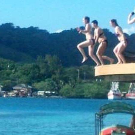 Roatán, Honduras: Island tour snorkeling, Zipline, hiking,beach and much more.