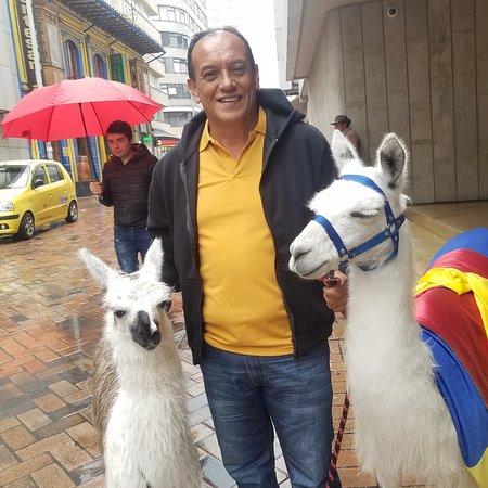 Bogota, Kolombiya: Bogotá,  colombia