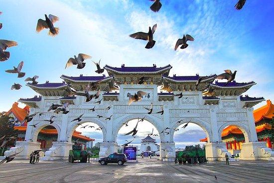 Tour privato di Taipei: servizio di