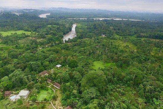 Explore a selva equatoriana 4 dias 3N...