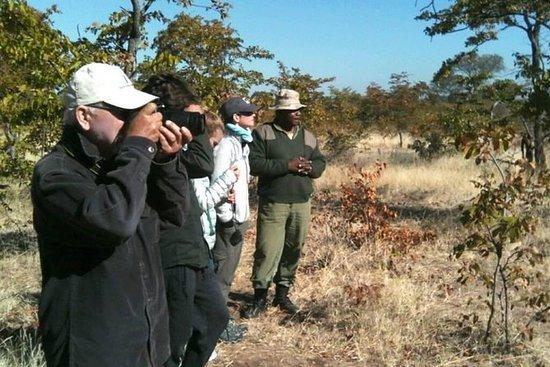 Andar de rinoceronte