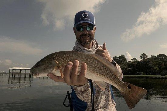 Pesca costiera nella baia