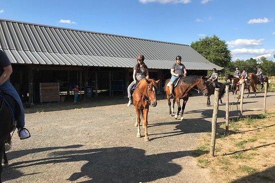 骑马课程/恢复1 H