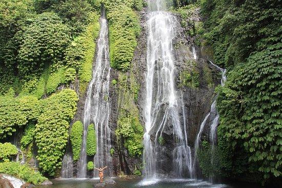 バリ滝の共有ツアーを追う