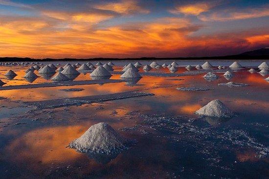 Salar De Uyuni (Classic 3 Days Trip...