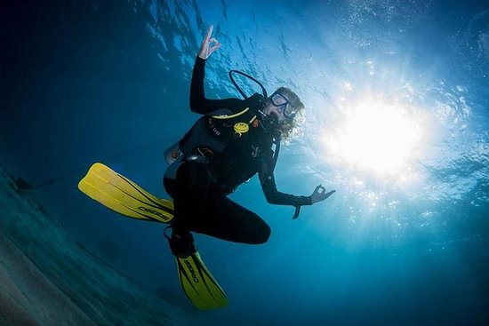 バリ島からヌサ諸島へのキャスタウェイバリハイクルーズ-ダイビング体験付き