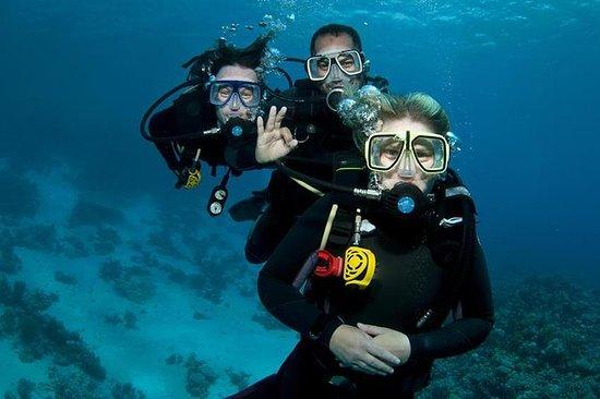 ダイビング体験付きのレンボンガン島へのアリストキャットバリハイクルーズ