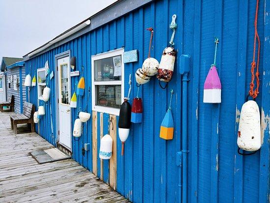 East Coast scene at Fisherman's Cove