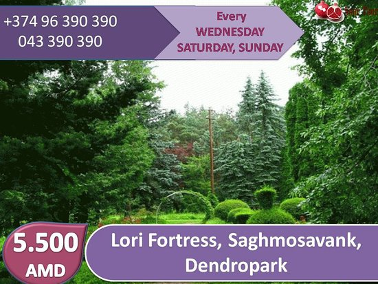 Armenia: #Lori fortress#saghmosavank#Dendropark