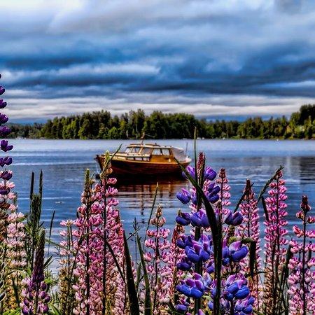 ฟินแลนด์: Finlandia