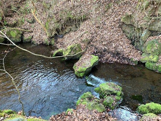 Deguchi Pond