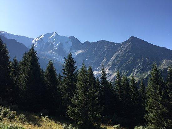 Tramway du Mont-Blanc: 車窓からの景色