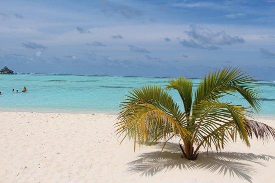 Maldivler: Пляж курорта Sun Island