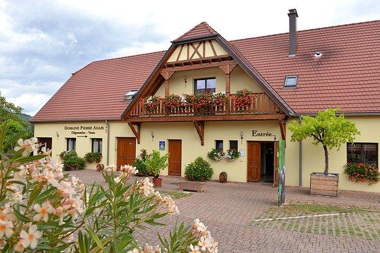 Ammerschwihr, Francja: Accueil | Domaine Pierre Adam