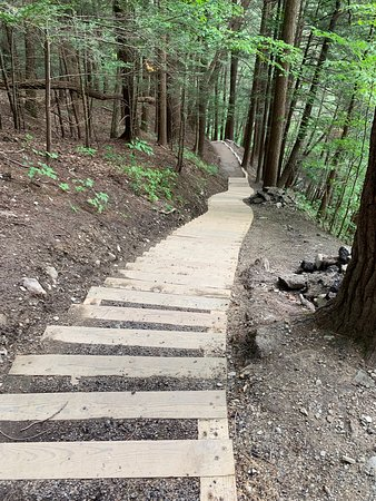 Robert Treman State Park : Steps along the gorge trail