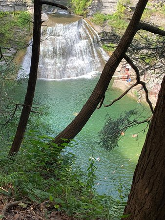 Robert Treman State Park : View of the swimming area from above.  Note the diving board right next to the falls!