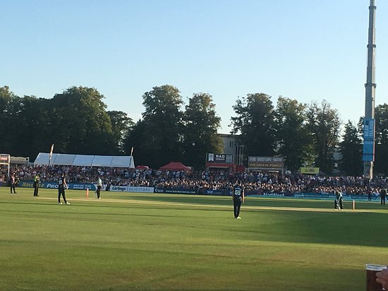 Early evening at Cricket