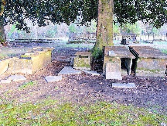 Old Cahawba Archaeological Park: new cemetery