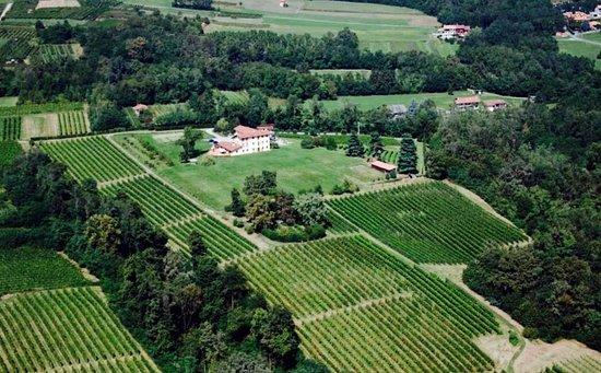 Azienda vitivinicola Il Roccolo di Mezzomerico