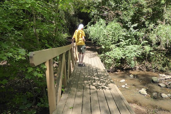 Walking over the brook on a short, narrow bridge is fun and a great place to take photos.