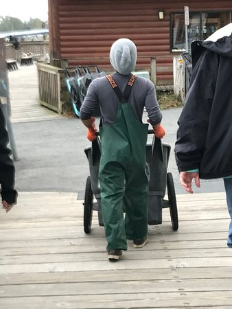 This is 'W'/ You will like him! Here he is wheeling our catch (that he cleaned) across the street to Captain Jack's for processing/freezing.