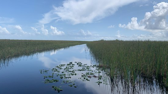 Deerfield Beach Airboat Rides: Trail