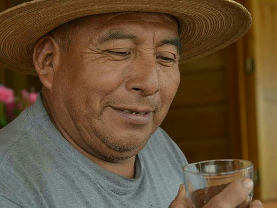 Café de Guatemala. Varias regiones nos proveen el mejor café. Cerca de La Antigua, un mágico lugar esta disponible para llevarte por un recorrido único y diferente. Para aprender del café, para aprender de Guatemala.