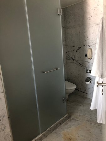 Hilton Athens: Toilet and separate shower in washroom